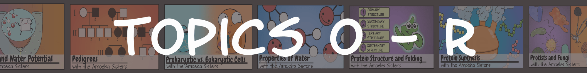hight resolution of Amoeba Sisters Handouts - Science with The Amoeba Sisters