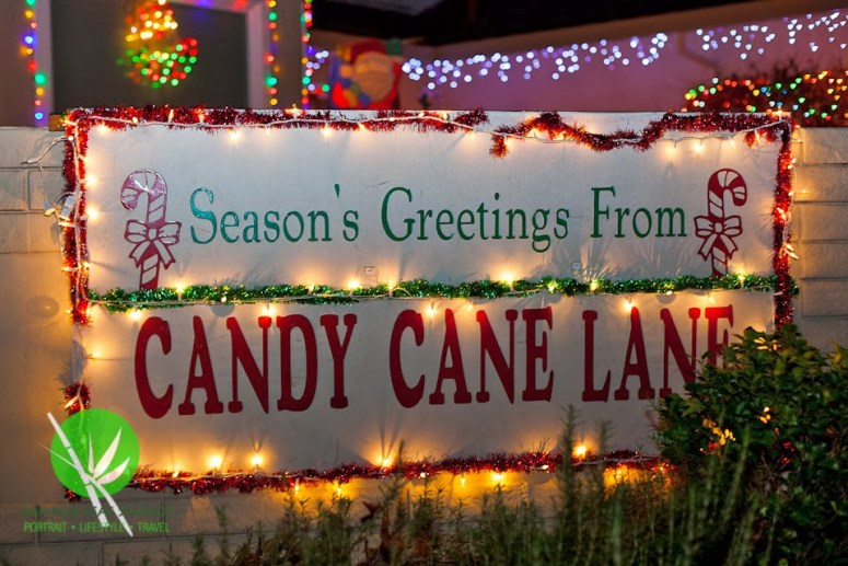 CandyCane-100