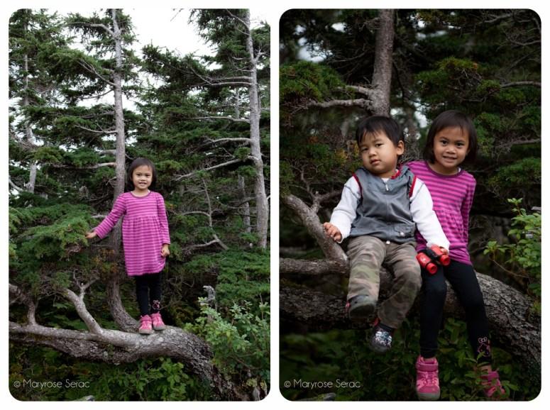 Hiking in Juneau Alaska