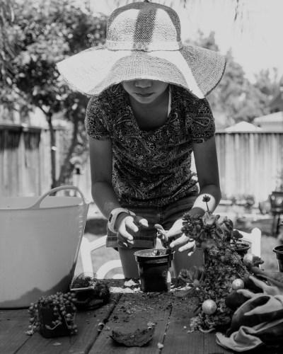 Afternoon Gardening