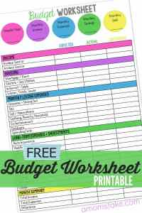 Family Budget Worksheet - A Mom's Take