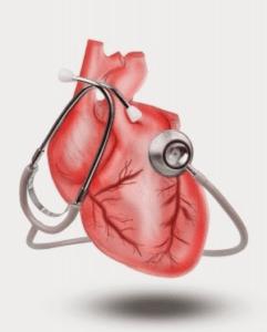 Cara Menjaga Kesehatan Jantung Alat Pemompa Darah pada Manusia