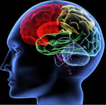 macam-macam gangguan dan penyakit pada sistem saraf manusia
