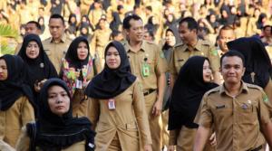 Kementerian LHK Resmi Mengumumkan Kelulusan Akhir Seleksi CPNS Tahun 2017