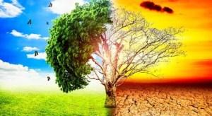 Pemanasan Global, Penyebab, dan Dampaknya Terhadap Kehidupan di Bumi