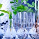 Latihan Soal UN IPA SMP Materi Bioteknologi dan Pembahasannya