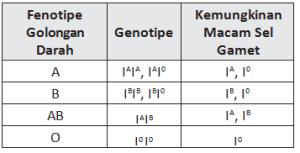 Ringkasan Dan Latihan Soal Un Ipa Smp Materi Pewarisan Sifat - Perkawinan Golongan Darah Ab Dan B, Buatlah Diagram Perkawinan Dari Orang Tua Yang Bergolongan Darah Ab Dan 0 Berapa Peluang Brainly Co Id