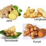 Jelaskan Perbedaan Antara Vegetatif Alami dan Buatan Pada Tumbuhan?