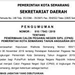 Rincian Formasi Seleksi CPNS Tahun 2019 Kota Semarang