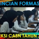 Daftar Rincian Formasi CASN Provinsi Sumatra Utara Tahun 2021