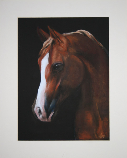 Horse portrait - Soft pastels - SOLD