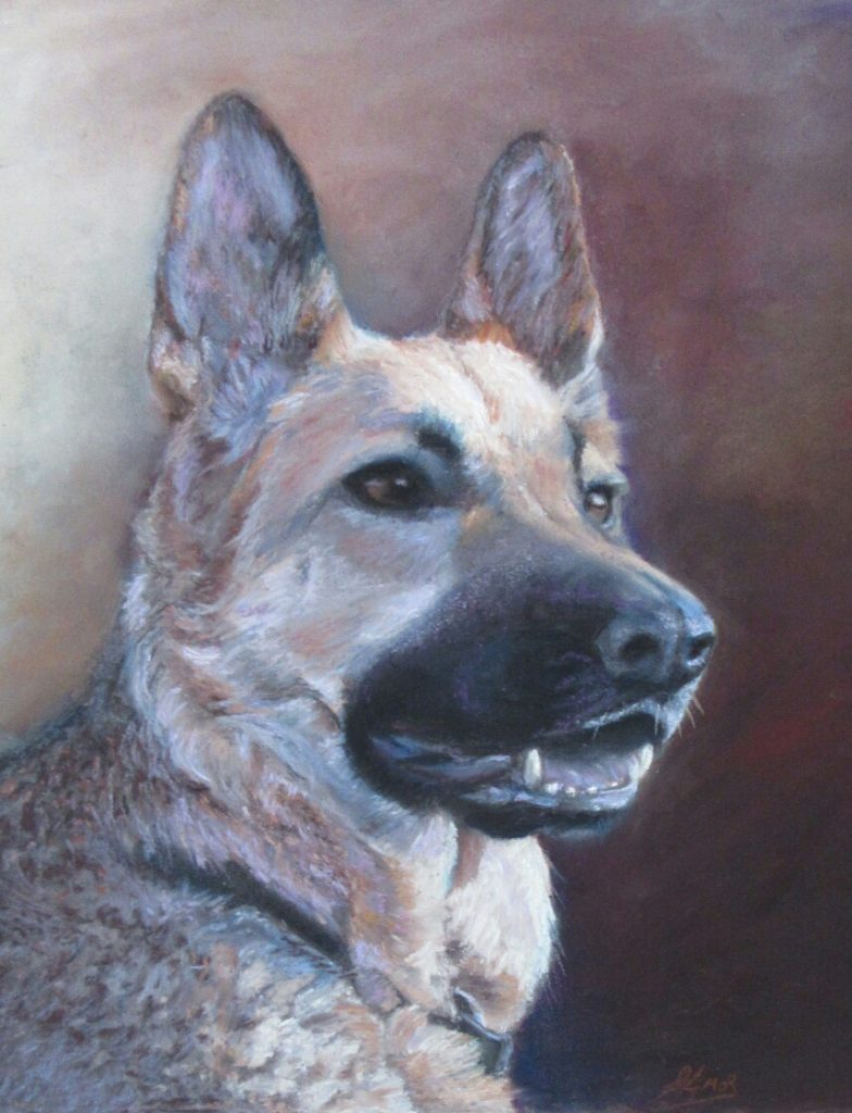 Pet portraits by Dunfermline artist Christopher Amos