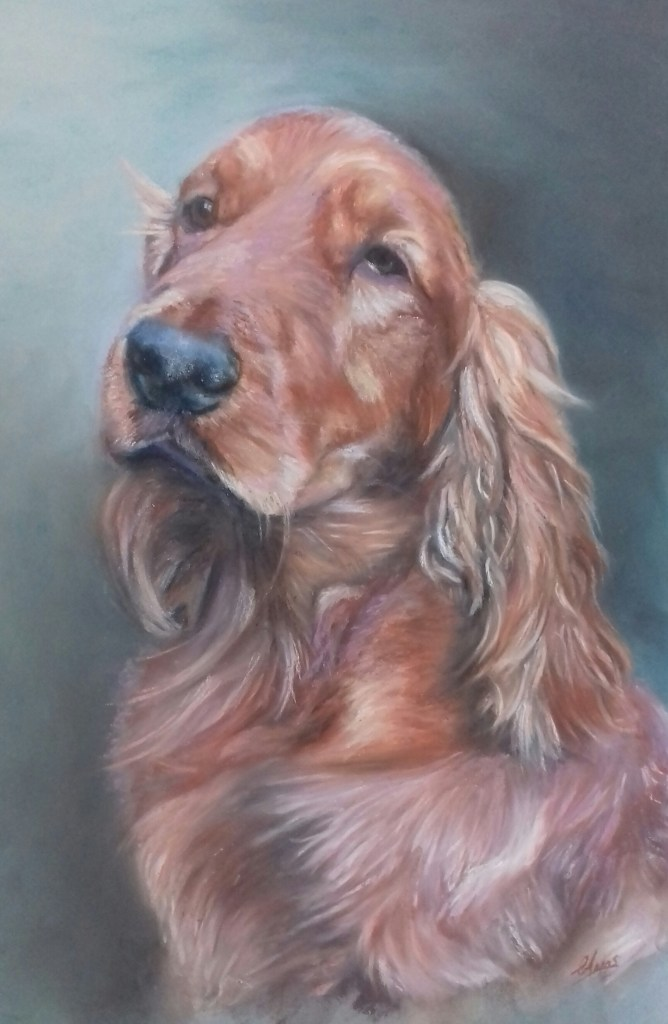 Cocker Spaniel in pastels