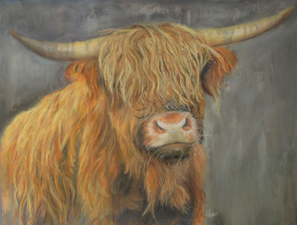 Highland Cow in pastels