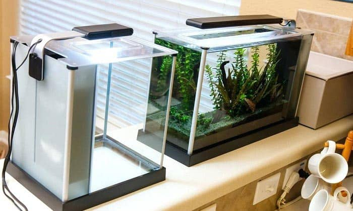 10 best aquarium light