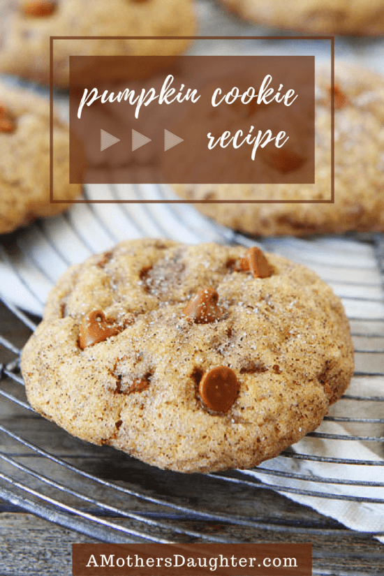 Pumpkin Cookie Recipe With Cinnamon Chips 1