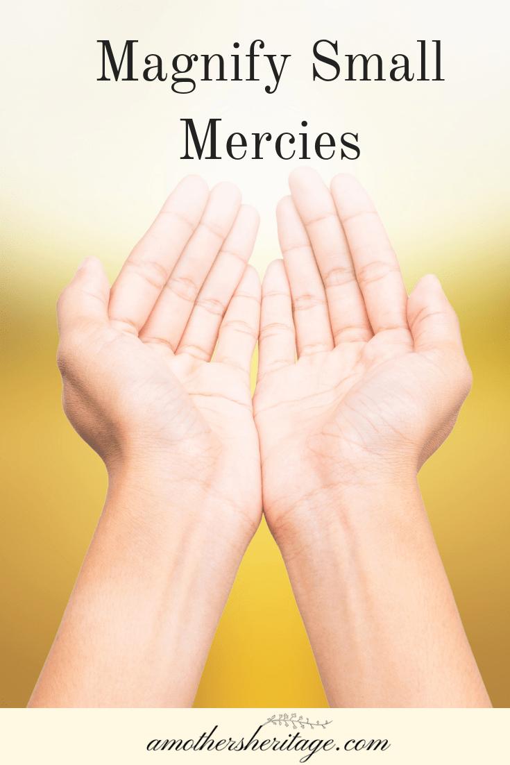 Magnify Small Mercies