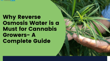 Ampac USA-Why Reverse Osmosis Water is a Must for Cannabis Growers- A Complete Guide (1)