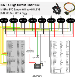 ign1a smart coil by amp efi wiring diagram [ 1500 x 1500 Pixel ]