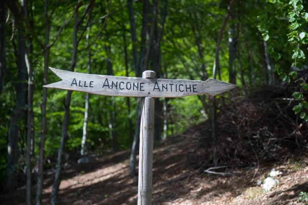 Insegna della via dell Ancone