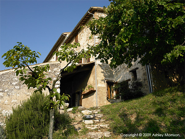 IL Cipresso villa in the Pianciano hamlet.