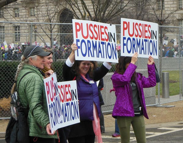 Pussies In Formation