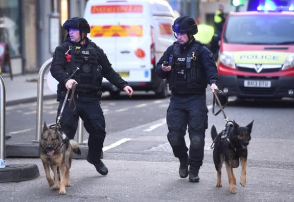 Police with Dogs in London After Terrorist Attack 2019