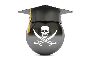safety co-ordinator pirate image