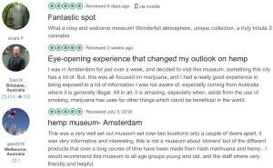 Hash Marihuana Hemp Museum Tripadvisor reviews