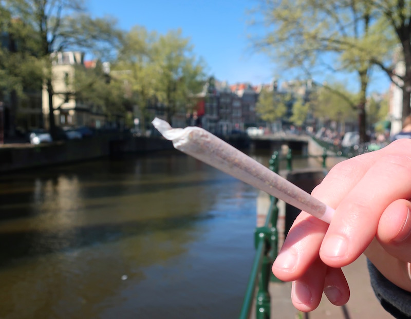 Weed Joint in Amsterdam Cannabis