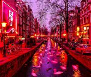 Amsterdam Brothel Red Light District Area