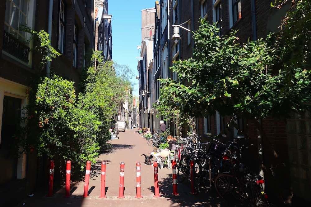 Amsterdam Red Light District Oude Nieuwstraat