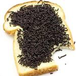 Dutch food - hagelslag