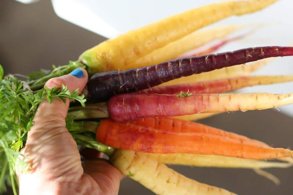 Locally grown rainbow carrots!