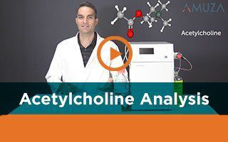 Fast analysis of acetylcholine for neuroscience applications