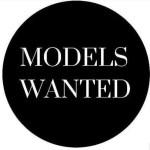 Hues and shades models