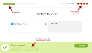 Feedback within a Duolingo lesson