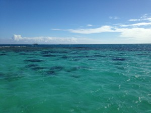 Unedited photo of the gorgeous water on our afternoon dive. The pictures don't do it justice.