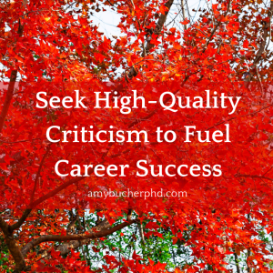 Seek High-Quality Criticism to Fuel