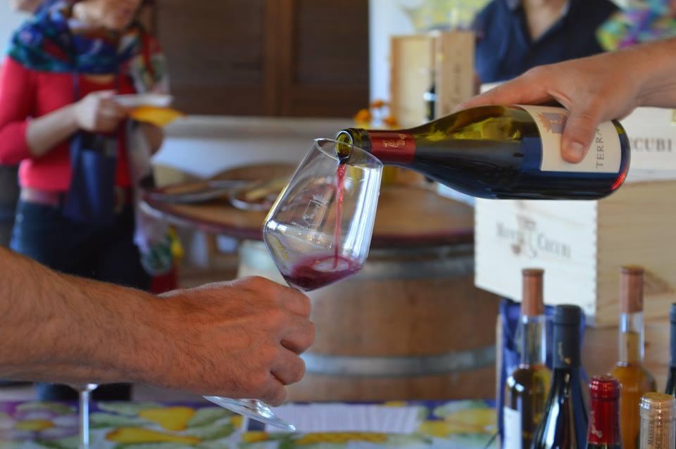 The wine tasting at Monti Cecubi
