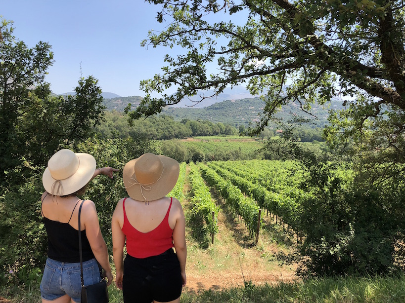 Visit the Winery in the Old Roman Wine Tour
