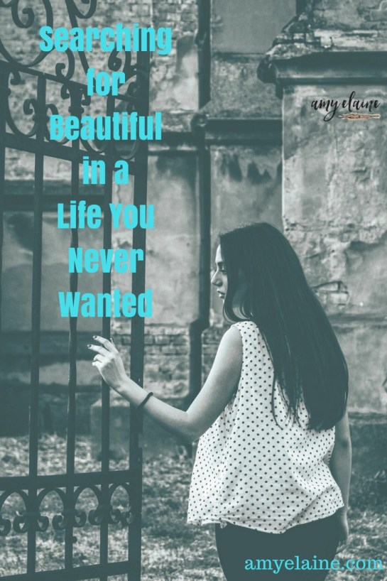 beutiful-life-searching