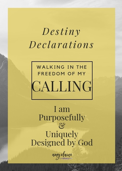 destiny-declarations-calling-cards