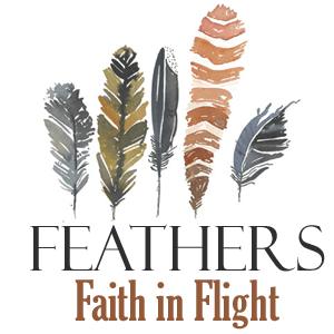 FeathersiTunes2-300