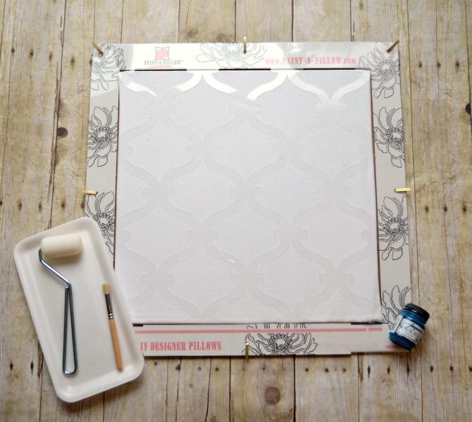 paintapillow1