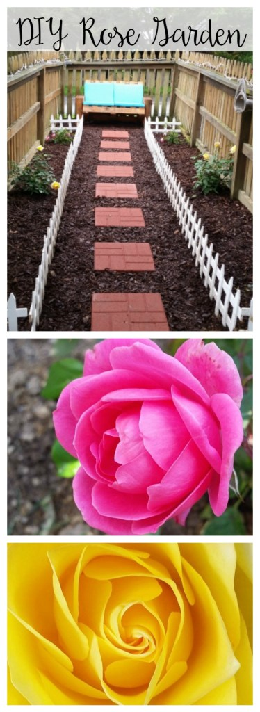 DIY Rose Garden