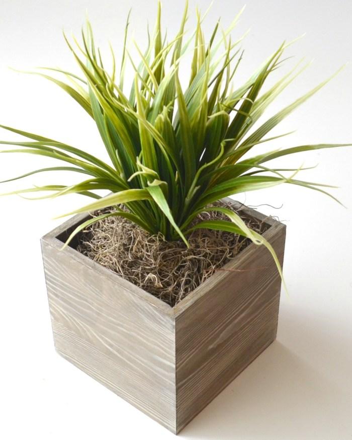 Barnwood Succulent Planter