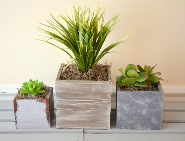 Succulent Planters made with Painted Finishes
