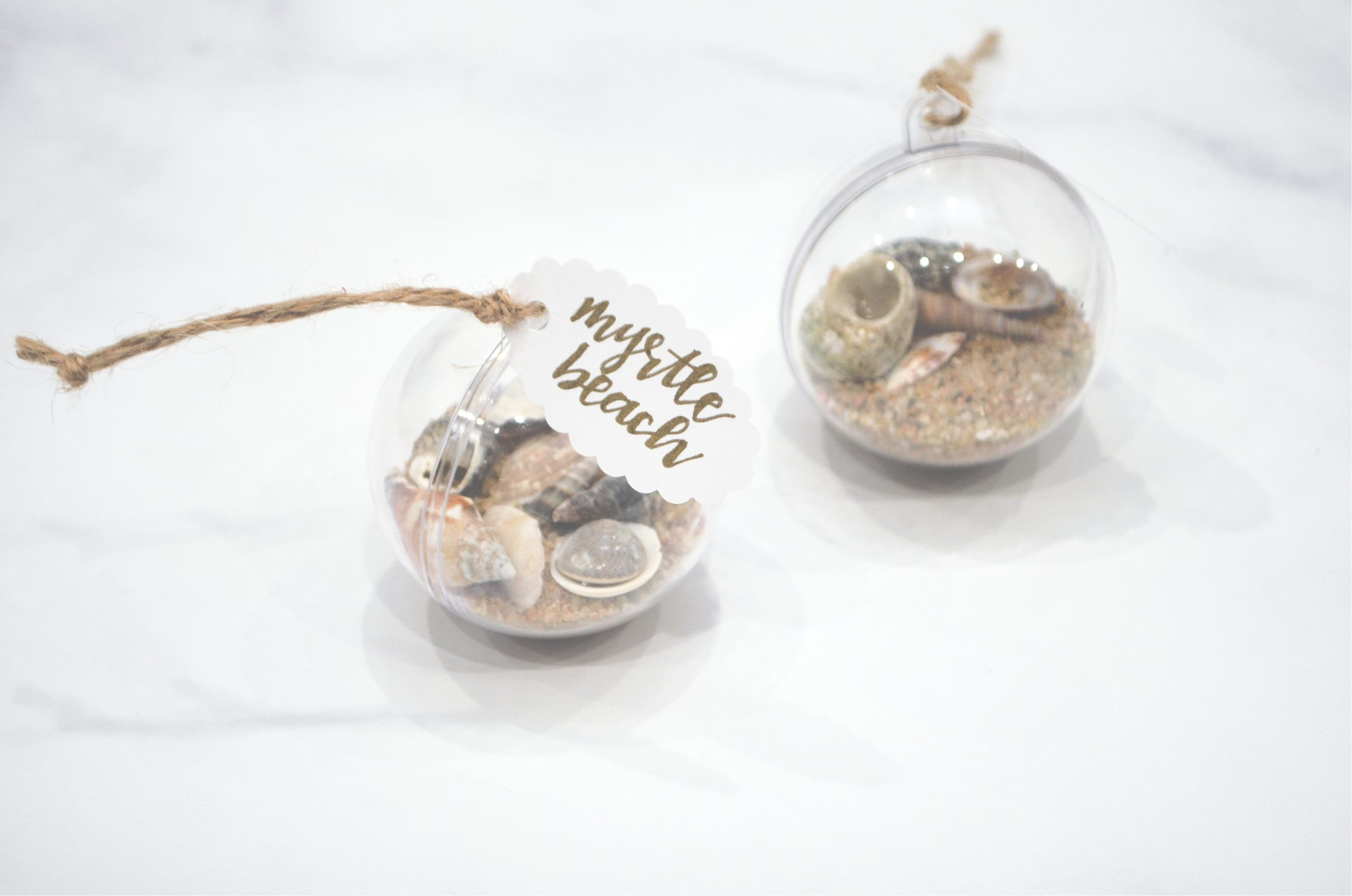 Easy Seashell Ornament