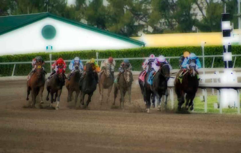 日本でメジャーな競馬
